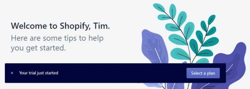 Как я создал дропшиппинг магазин на Shopify и заработал 6667$ за 8 недель