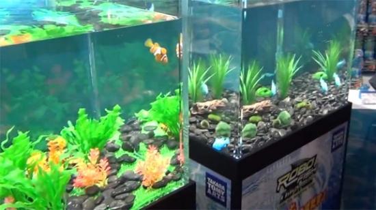 Интересное изобретение — рыбки-роботы