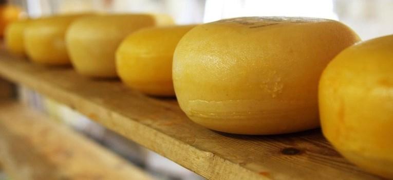 Как отличить сырный продукта от сыра: советы эксперта