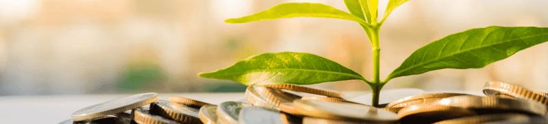 «Зелёные» облигации и как их купить
